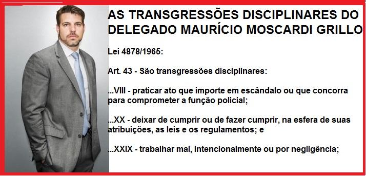 TRAQNSGRESSOES DISCIPLINARES DE MOSCARDI FOTO